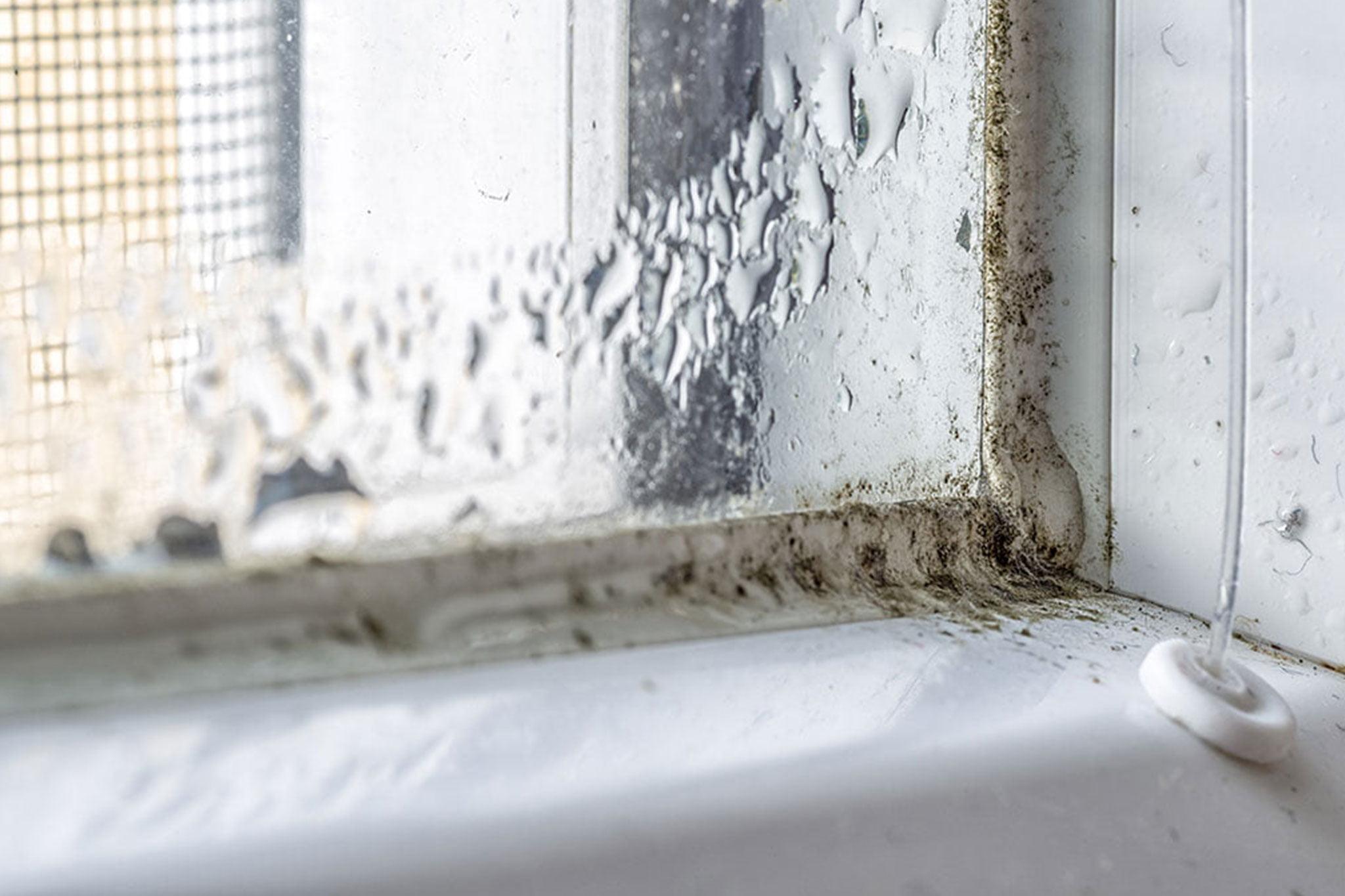 Evita la condensación en las ventanas – Hermética