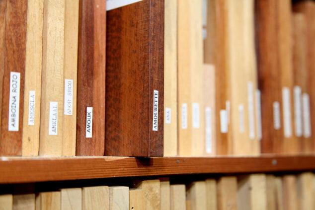 Imagen: Amourette, la madera más valiosa de la colección