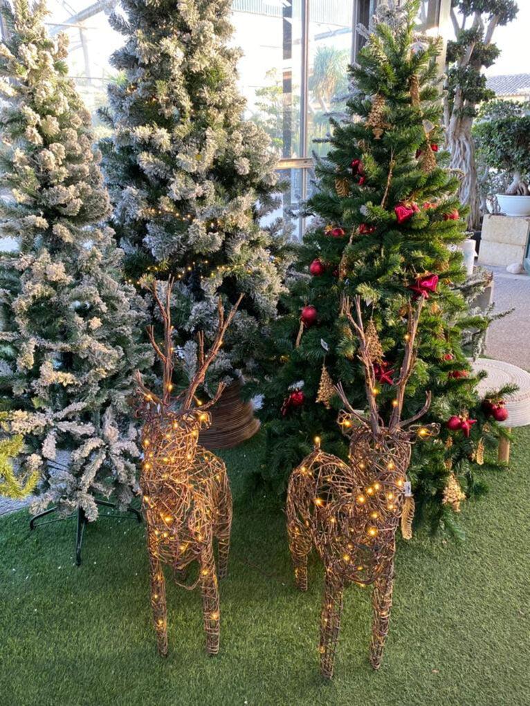 Decoración navideña en Dénia - Natura Garden