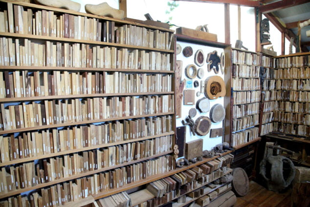 Imagen: Exposición de maderas en la xiloteca