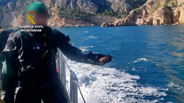 Imagen: La Guardia Civil devuelve al mar una cigarra del mediteráneo encontrada entre las redes
