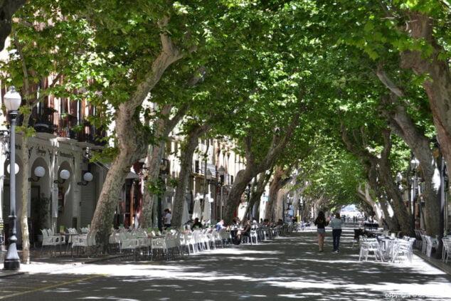 Image: rue Marqués de Campo, le centre névralgique de Dénia
