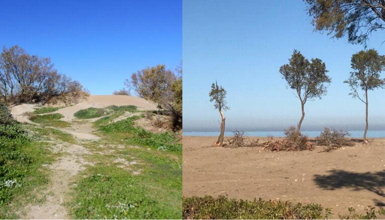 El antes y el después de las dunas de El Raset