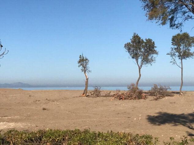 Imagem: Estado das dunas hoje