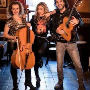 Imagen: El Centre Social acoge el concierto didáctico de Rock Road Trío