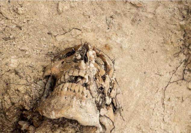 Imagen: Exposición colectiva %22Memoria Desenterrada%22