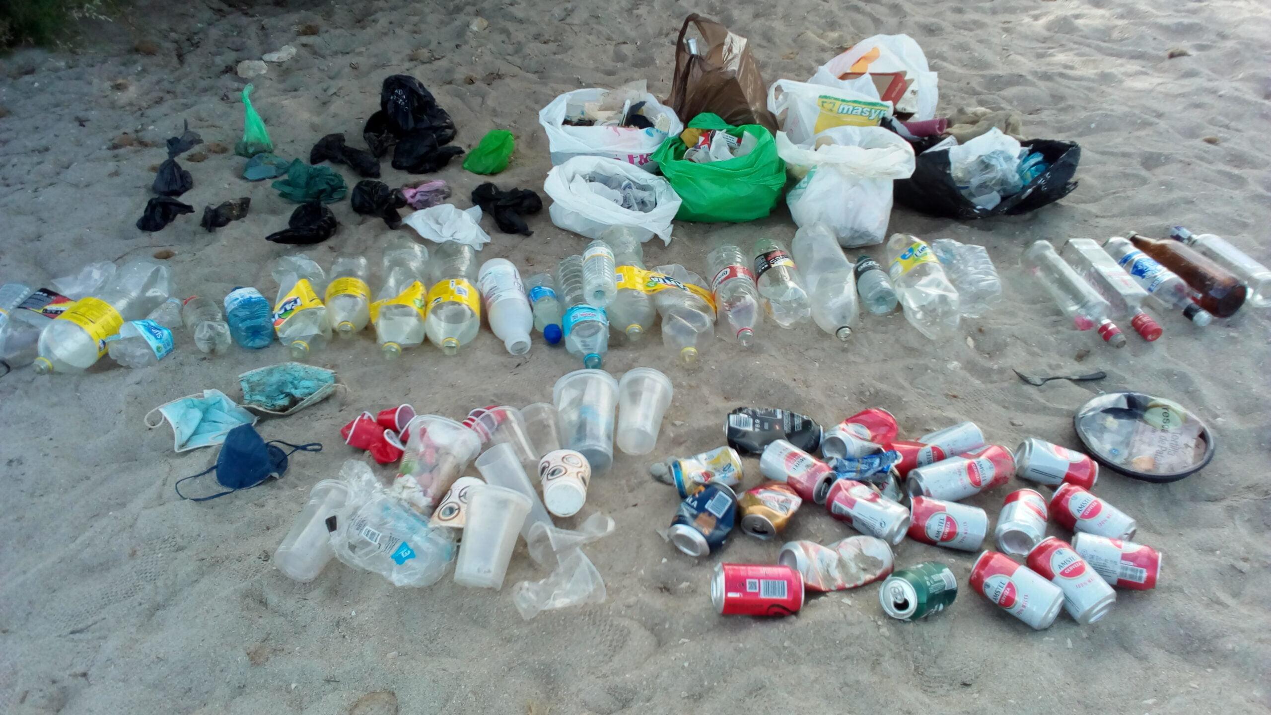 Residuos de la limpieza de la Playa del Raset