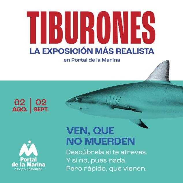 Imagen: Exposicion de tiburones en Portal de la Marina