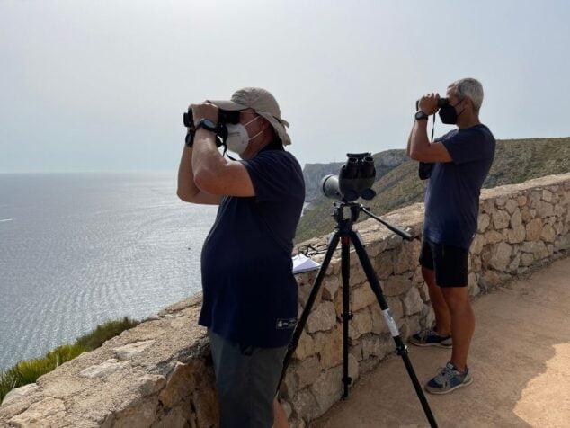 Imagen: Labores del Proyecto Cabo Rorcual de la UPV